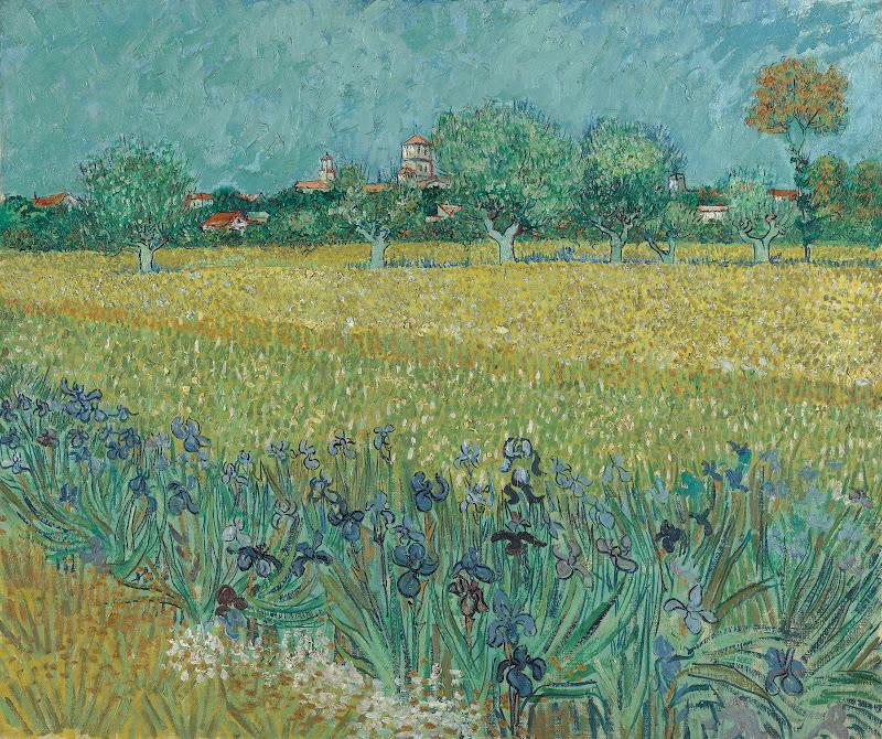 Field with irises near arles van gogh museum terms izmirmasajfo