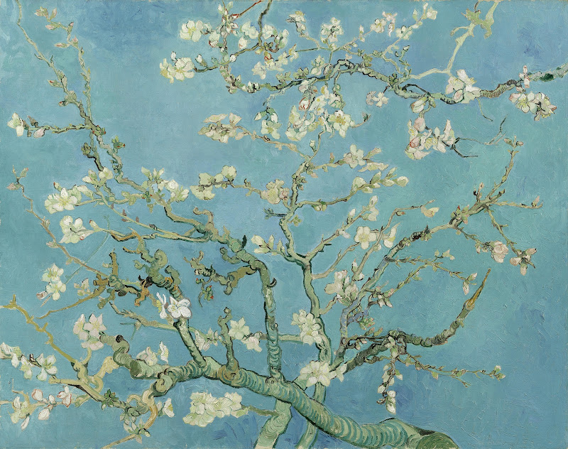 Almond Blossom - Van Gogh Museum for Almond Blossom Van Gogh Poster  146hul